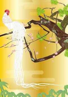 White tailed chicken _ Shochiku Meishi _ gold