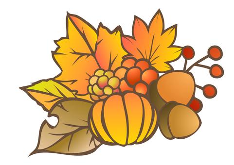 Fall Material 14