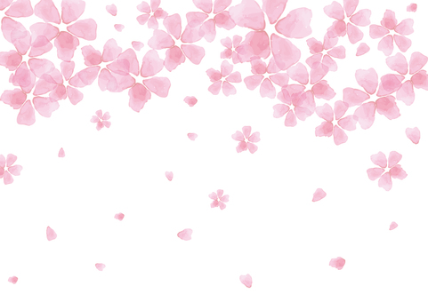 Spring Material 119 Cherry Blossoms in Watercolor Background