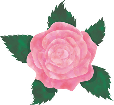 Rose flower watercolor style