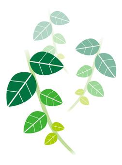 녹색 _ 잎 _2