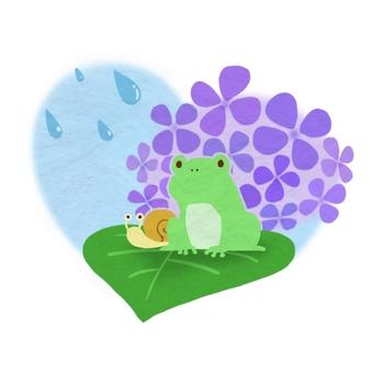 Rainy season illustration frog and snail