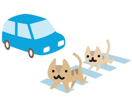 A cat crossing a pedestrian crossing