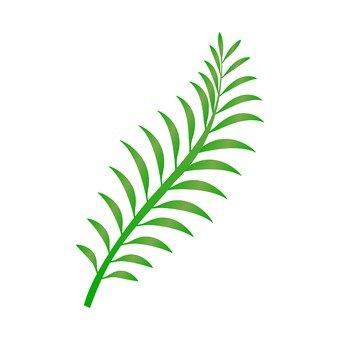 고사리 잎 2