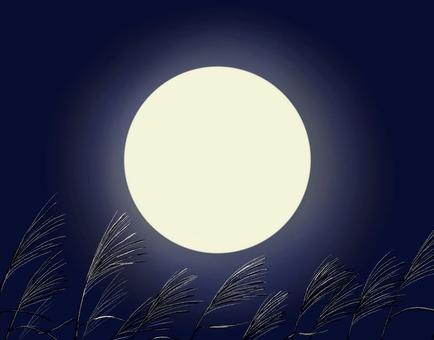 Moon and Susuki