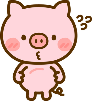Pigs concerned with stomach