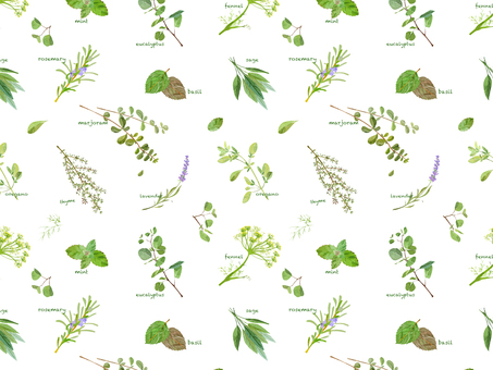 Herb pattern
