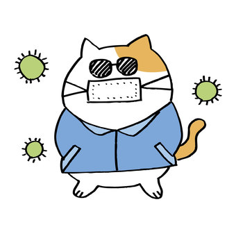 Hay fever disease cat