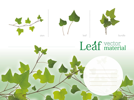 Leaf material summary