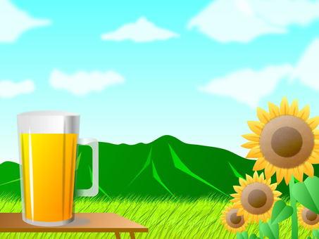 Beer and rural landscape (summer)