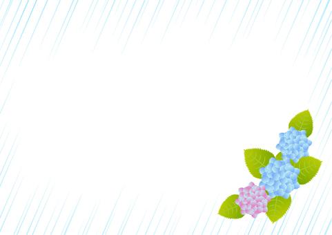 Hydrangea and rain - 2