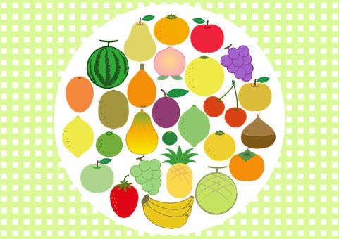 fruit_28 kinds of fruits 5