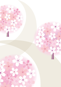 Sakura 55