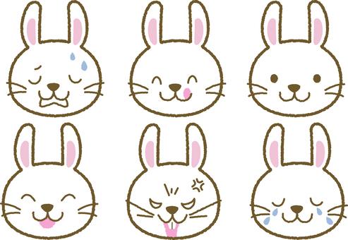 Facial expression rabbit