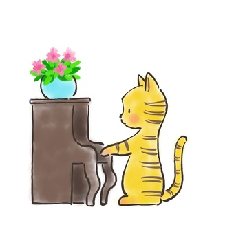Piano cat 28