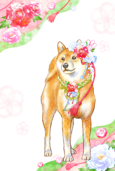 New Year card Shiba Inu (with background)