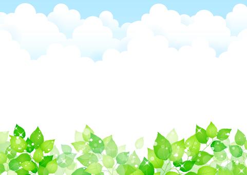 新鮮的綠色289