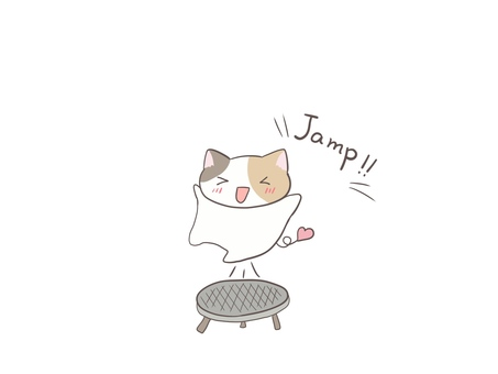 Calico cat playing on a trampoline