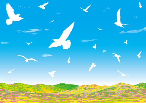 봄의 야산 웅비하는 새 고원 구릉 벽지