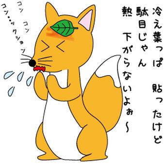 A cold fox