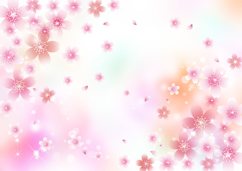 Cherry blossom pale background 1829