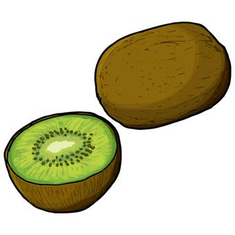 Kiwifruit / Kiwifruit