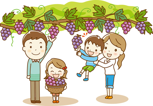 """Grape picking"" 03"