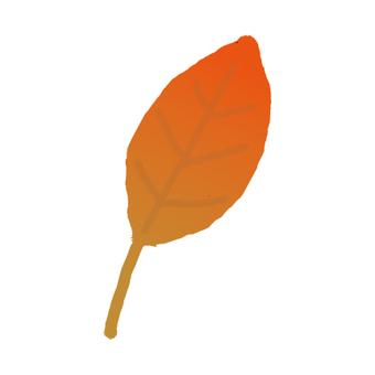 紅色的落葉