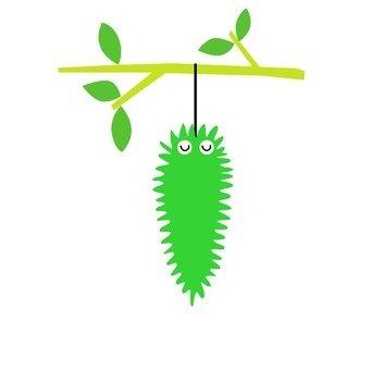 Green caterpillar hanging on a branch