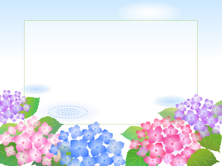 79. Hydrangea scenery
