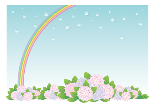 Hydrangea with rain and rainbow