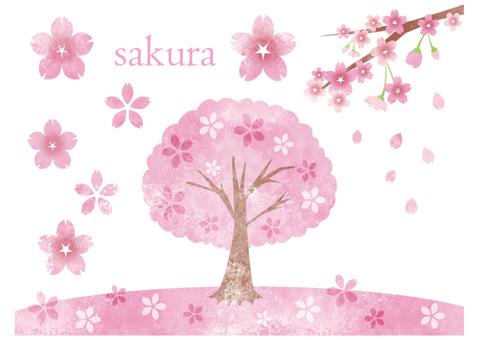 수채화 벚꽃 소재의 집합입니다.