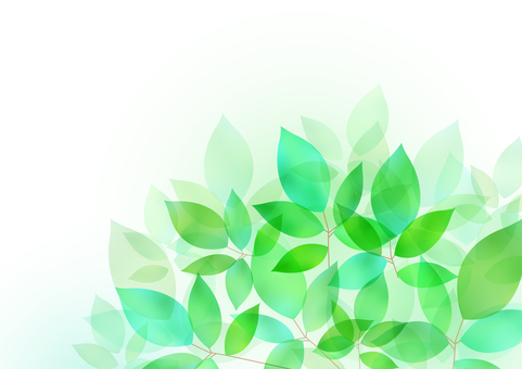 Fresh green material 26