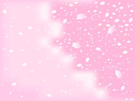 Cherry illustration material 3