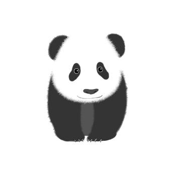 Child panda (no background)