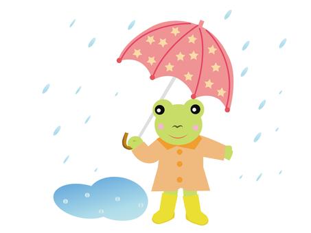 Cute frog in the rain