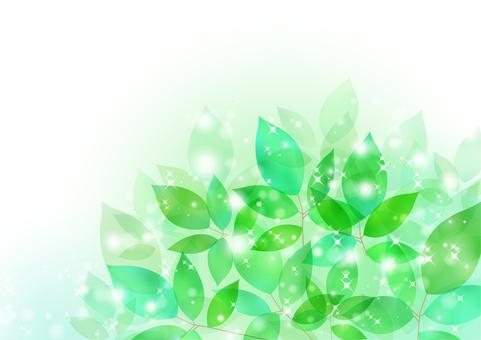 Fresh green material 27