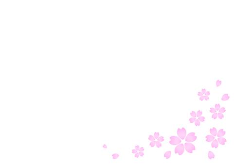 Cherry blossom material 19
