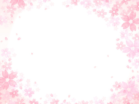 Cherry blossom background illustration 02