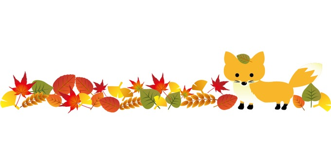 Line of fallen leaves with autumn fox