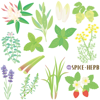 Condiment · Herb Set 02