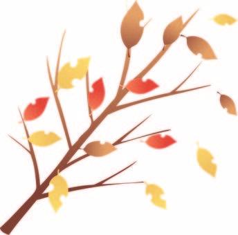 Konoha leaves · autumn leaves