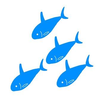 School of saltwater fish