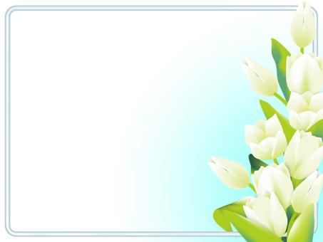 White tulip frame (sideways)