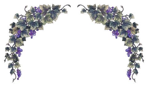 Grape illustration frame 01-3 (black line)