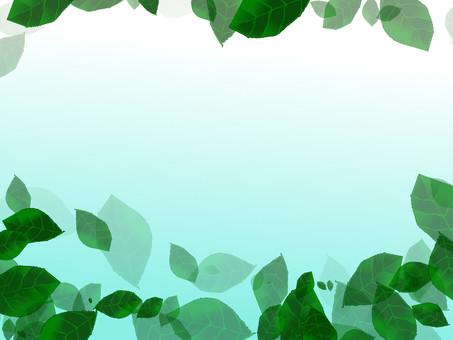 Leaf frame 1