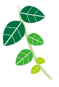 Green _ Leaf _ 1