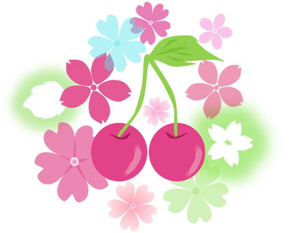 Cherry and Sakura