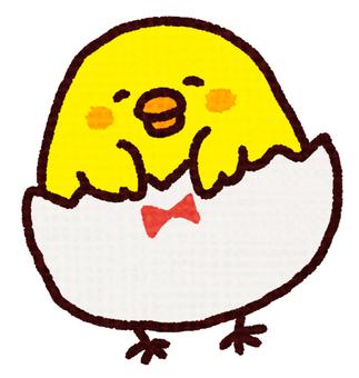 Egg pants chick