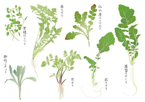 Spring seven species